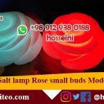 Salt lamp Rose
