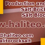 buy salt bricks