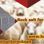 rock salt for livestock