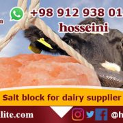salt block for horses