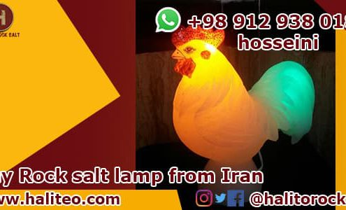 Wholesale Salt lamp