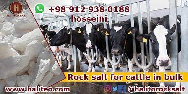Rock salt for cows